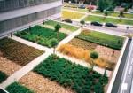 Zelené zahrady Hadovka